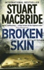 bokomslag Broken skin
