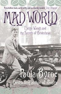 bokomslag Mad World