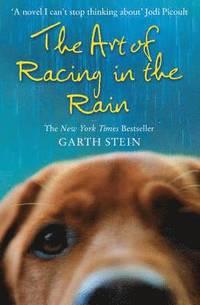 bokomslag The Art of Racing in the Rain