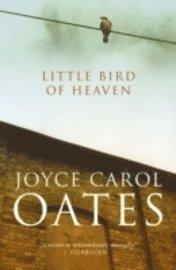 bokomslag Little bird of heaven