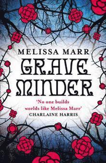 bokomslag Graveminder