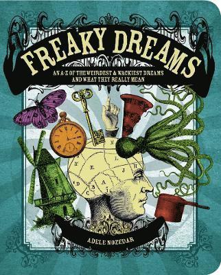 bokomslag Freaky Dreams