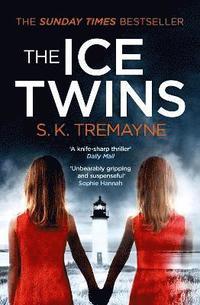 bokomslag The Ice Twins