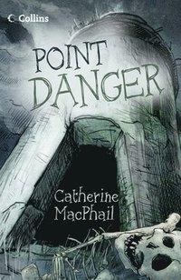 bokomslag Point Danger
