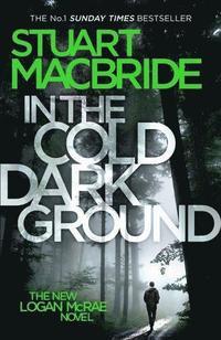 bokomslag In the cold dark ground