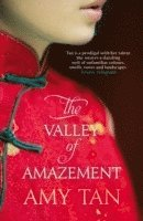 bokomslag The Valley of Amazement