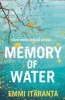 bokomslag Memory of Water