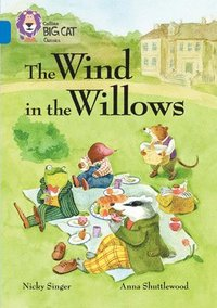 bokomslag The Wind in the Willows