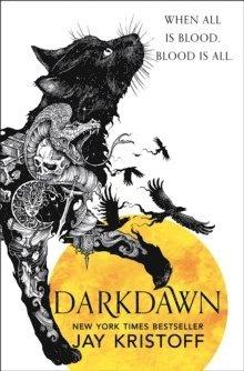 bokomslag Darkdawn
