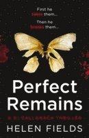 bokomslag Perfect Remains