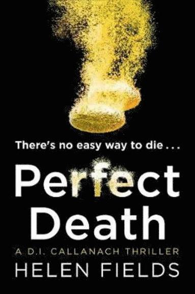 bokomslag Perfect Death