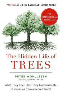 bokomslag Hidden life of trees - the international bestseller - what they feel, how t