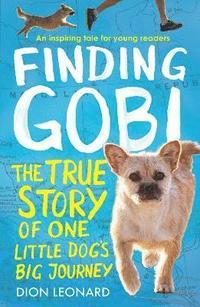 bokomslag Finding Gobi (Younger Readers edition)