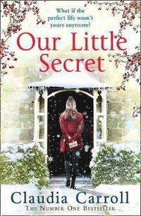 bokomslag Our Little Secret