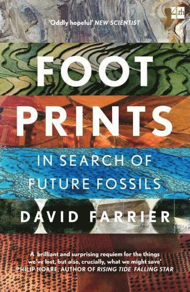 bokomslag Footprints