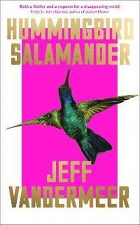 bokomslag Hummingbird Salamander