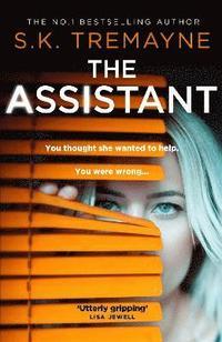 bokomslag The Assistant
