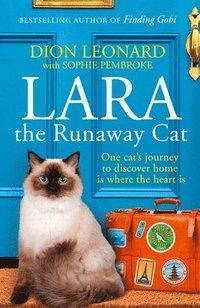 bokomslag Lara The Runaway Cat