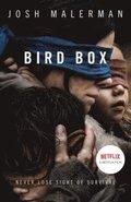 bokomslag Bird Box