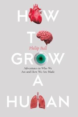 bokomslag How to Grow a Human