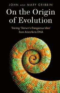 bokomslag On the Origin of Evolution