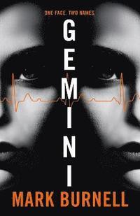 bokomslag Gemini
