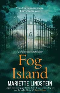 bokomslag Fog Island