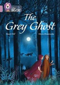 bokomslag The Grey Ghost