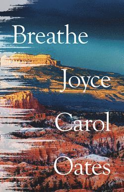 bokomslag Breathe