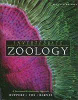 bokomslag Invertebrate zoology - a functional evolutionary approach