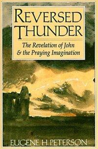 bokomslag Reversed Thunder