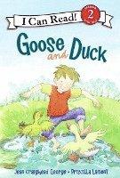 bokomslag Goose and Duck