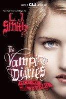 bokomslag The Vampire Diaries: The Return - Nightfall