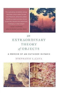 bokomslag Extraordinary theory of objects - a memoir of an outsider in paris