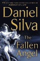 bokomslag Fallen Angel