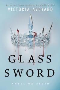 bokomslag Glass Sword