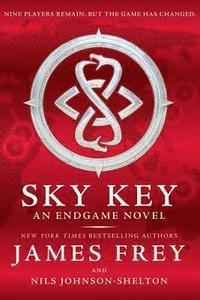 bokomslag Endgame: Sky Key