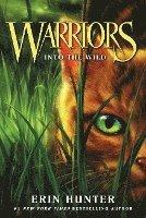 bokomslag Warriors #1: Into the Wild