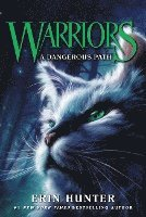 bokomslag Warriors #5: A Dangerous Path