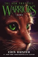 bokomslag Warriors: The New Prophecy #3: Dawn