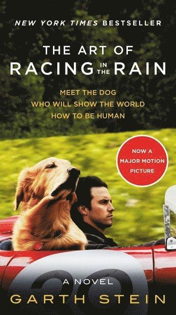 bokomslag The Art of Racing in the Rain MTI