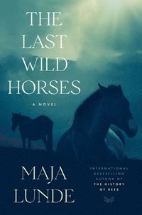 bokomslag The Last Wild Horses