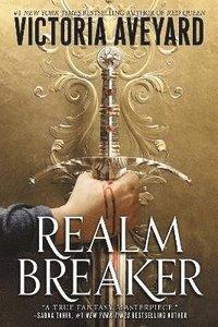 bokomslag Realm Breaker