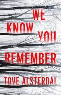 bokomslag We Know You Remember