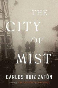 bokomslag City Of Mist