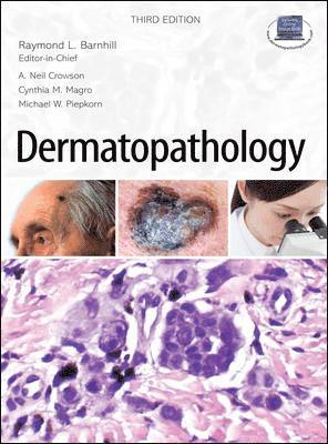 bokomslag Dermatopathology