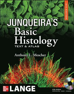 bokomslag Junqueira's basic histology : text and atlas, 12th edition: text and a