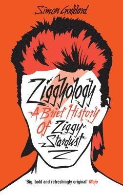 bokomslag Ziggyology