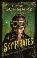 bokomslag Sky Pirates