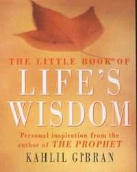 bokomslag The Little Book of Life's Wisdom